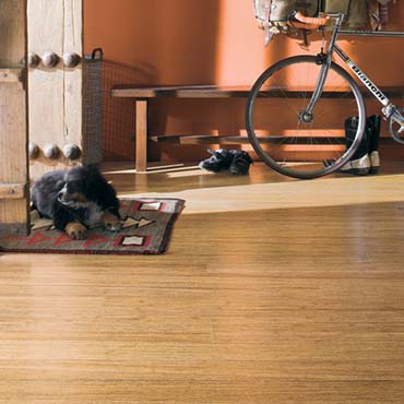 Teragren Bamboo Flooring | Salem, OR