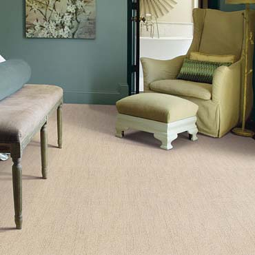 Caress Carpet by Shaw | Keizer, OR