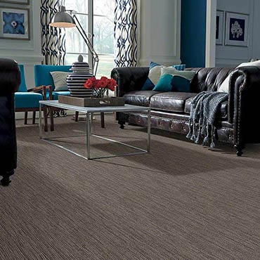 Anso® Nylon Carpet in Keizer, OR